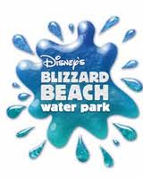 disney blizzard beacg snow